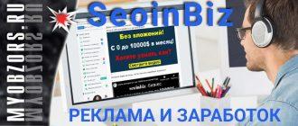 Вся правда о сервисе SeoinBiz